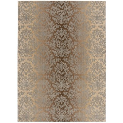 Rutha Mocha/Beige Area Rug Rug Size: Rectangle 53 x 75