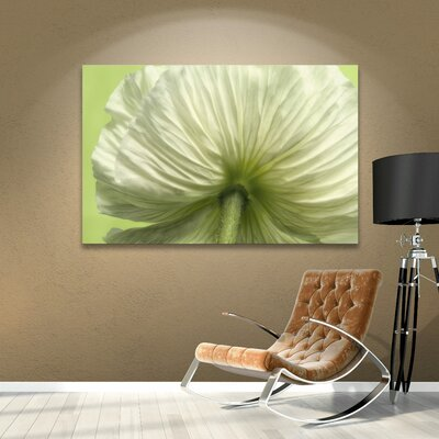 Frilly Petals Photographic Print on Wrapped Canvas Size: 08'' x 12''