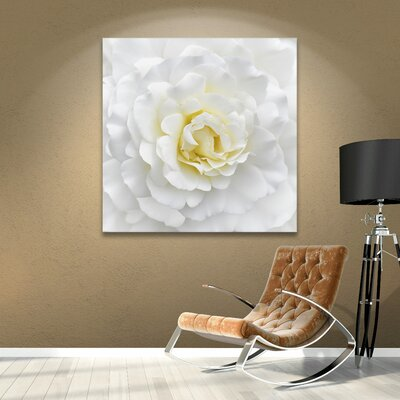 White Rose Photographic Print on Wrapped Canvas Size: 10'' x 10''