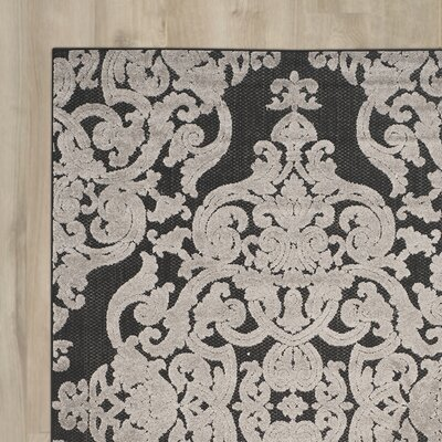 Mira Black Indoor/Outdoor Area Rug Rug Size: Rectangle 4 x 6