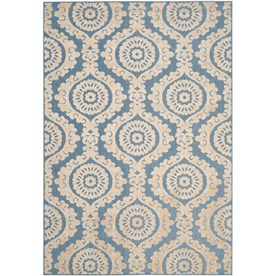 Mira Blue Outdoor Area Rug Rug Size: 53 x 77