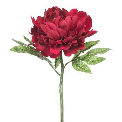 Single Bloom Peony Stem (Set of 12) Flower Color: Deep Red