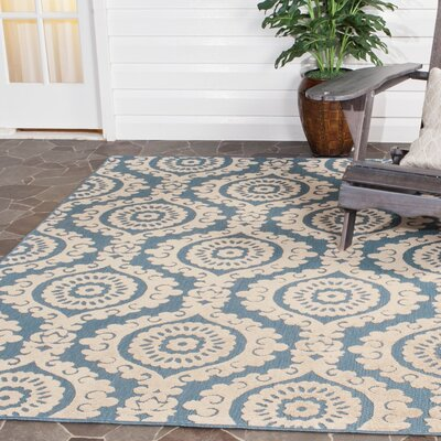 Mira Blue Outdoor Area Rug Rug Size: Rectangle 53 x 77