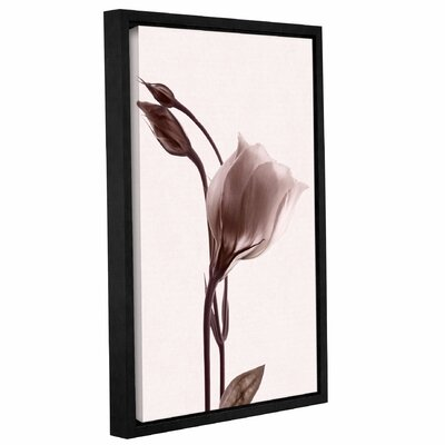 Grace in Simplicity Framed Graphic Art Size: 12