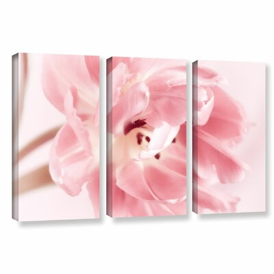 Rosy Pink Tulip IV 3 Piece Graphic Art on Wrapped Canvas Set Size: 24