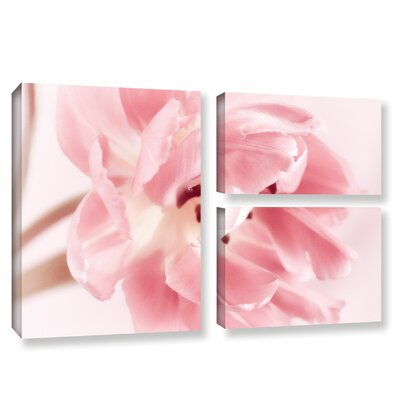 Rosy Pink Tulip IV 3 Piece Graphic Art on Wrapped Canvas Set