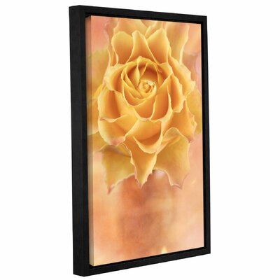 Rose I Framed Graphic Art on Wrapped Canvas