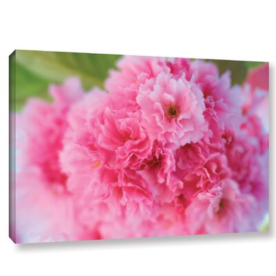 Cherry Photographic Print on Wrapped Canvas