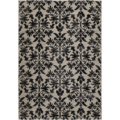 Justa Gray Area Rug Rug Size: Rectangle 92 x 125