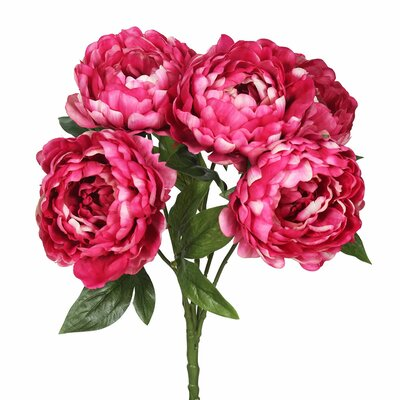 Peony Bunch Stem Flower Color: Hot Pink