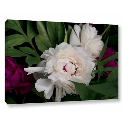 Peonies I Photographic Print on Wrapped Canvas Size: 12