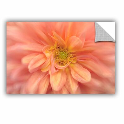 Dahlia Removable Wall Decal Size: 08