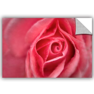 Coral Pink Removable Wall Decal Size: 08