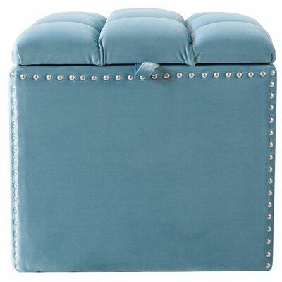 Eloisa Storage Ottoman Upholstery: Arctic blue