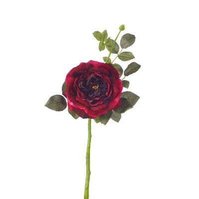 Garden Rose Stem (Set of 12) Flower Color: Pink Magenta