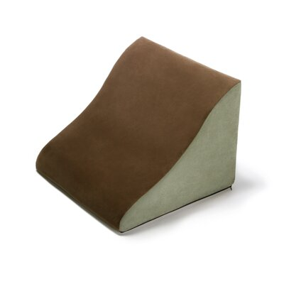 Avana Back Rest Memory Foam Back and Lumbar Pillow Color: Mocha/Sage