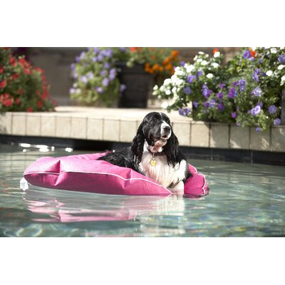 Cleo Poochie Pool Mat Size: Large, Color: Raspberry