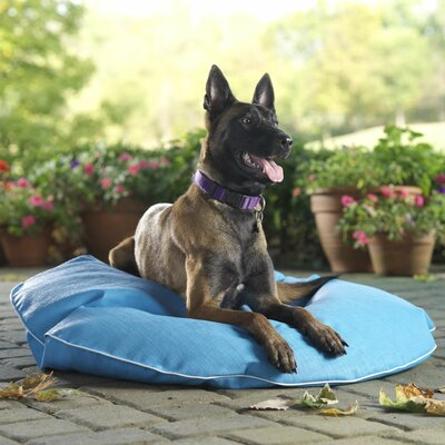 Poochie Pool Mat Color: Pool Blue, Size: Medium