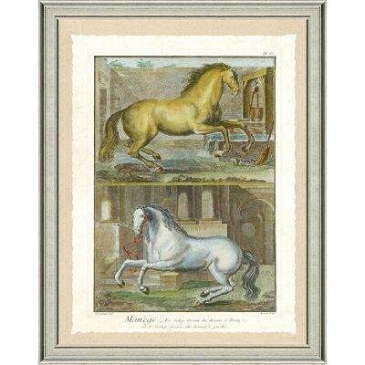 'Double Horse Scene II' Framed Graphic Art Print