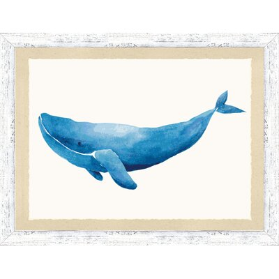 'Watercolor Whale I' Framed Watercolor Painting Print