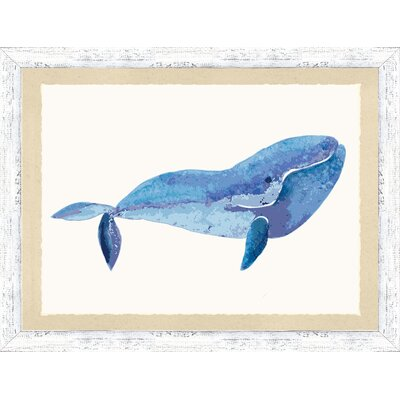 'Watercolor Whale II' Framed Watercolor Painting Print