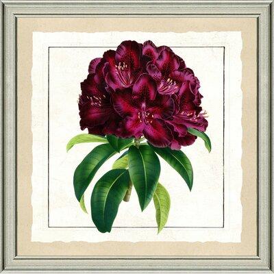 'Bold Botanical II' Framed Graphic Art Print