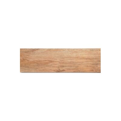 Sandalwood 5 x 24 Porcelain Wood Look/Field Tile in Driftwood Blonde