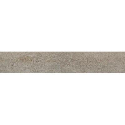 Alpine 8 x 24 Ceramic Wood Field Tile in Ash
