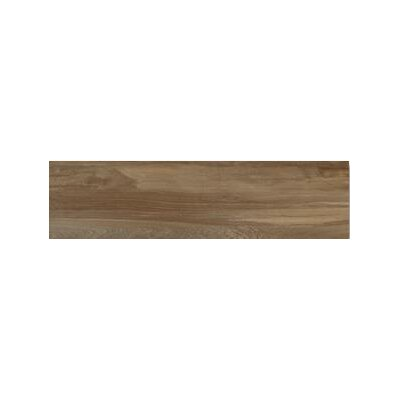 Aequa 12 x 48 Porcelain Wood Look/Field Tile in Castor