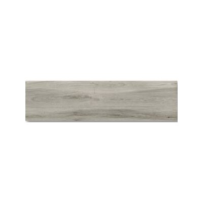 Aequa 12 x 48 Porcelain Wood Look/Field Tile in Cirrus