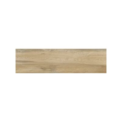 Aequa 12 x 48 Porcelain Wood Look/Field Tile in Silva