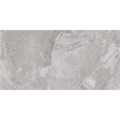 Canyon 12 x 24 Porcelain Field Tile in Grey