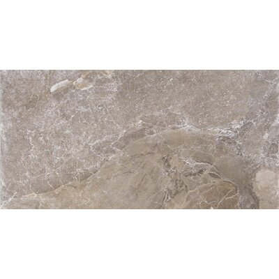 Canyon 12 x 24 Porcelain Field Tile in Marron