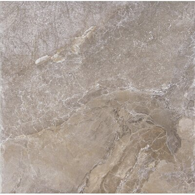 Canyon 18 x 18 Porcelain Field Tile in Marron