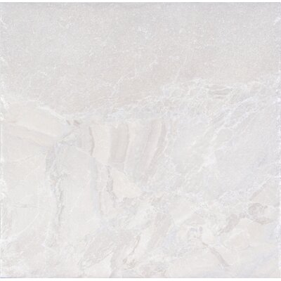 Canyon 18 x 18 Porcelain Field Tile in White