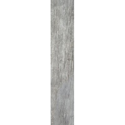 Century 8 x 48 Porcelain Wood Look/Field Tile in Grigio