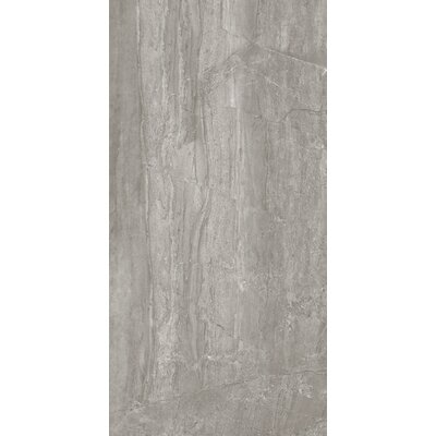 Blast 12 x 24 Porcelain Wood Look/Field Tile in Antracite