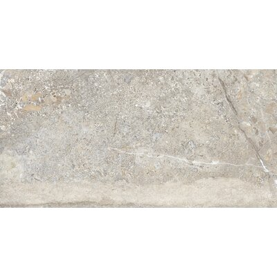 Vstone 19 x 38 Porcelain Field Tile in Nut Matte