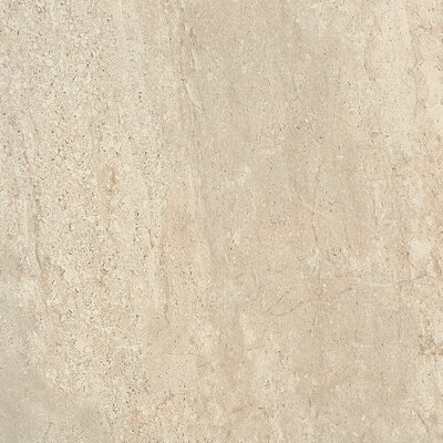 Headline 18 x 18 Porcelain Field Tile in Herald Ivory