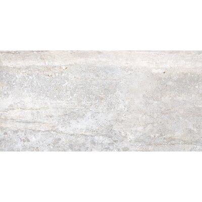Vstone 19 x 38 Porcelain Field Tile in Silver Matte