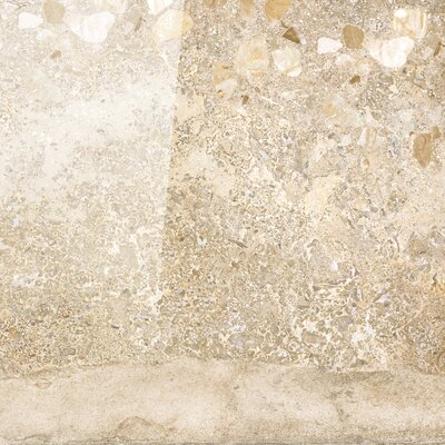 Vstone 19 x 19 Porcelain Field Tile in Amber Semi Polished