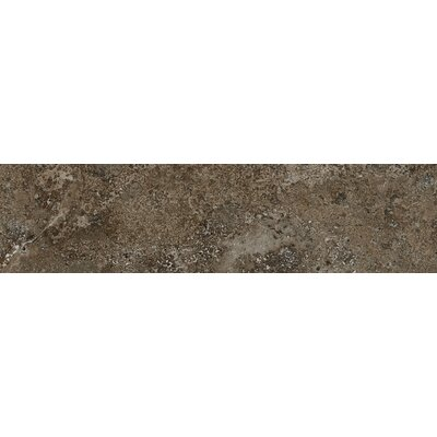Vstone 9 x 38 Porcelain Field Tile in Pulpis Matte