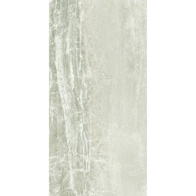 Anthology 18 x 36 Porcelain Field Tile in Ice