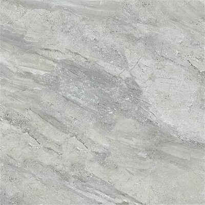 Arena Stone 16 x 32 Porcelain Field Tile in Grigio