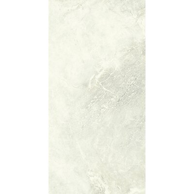 Anthology 18 x 36 Porcelain Field Tile in Ivory