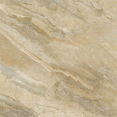 Arena Stone 12 x 24 Porcelain Field Tile in Oro