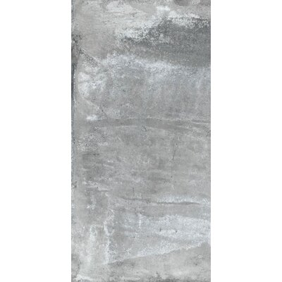 Argile 6 x 12 Porcelain Field Tile in Gray