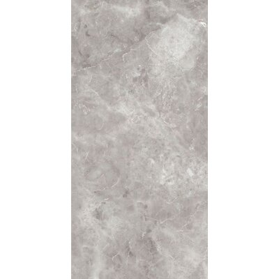 Asiago 24 x 3 Bullnose Tile Trim in Gray