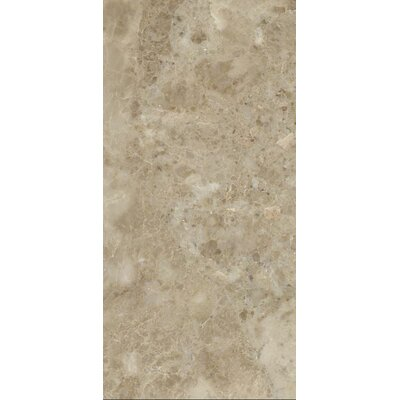 Asiago 12 x 24 Porcelain Field Tile in Beige