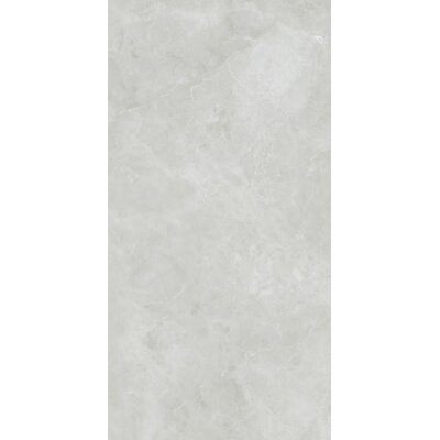 Asiago 12 x 24 Porcelain Field Tile in White